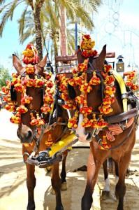 photodune-2375286-horse-fair-in-jerez-xs