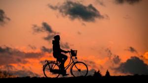 bikes_titelbild