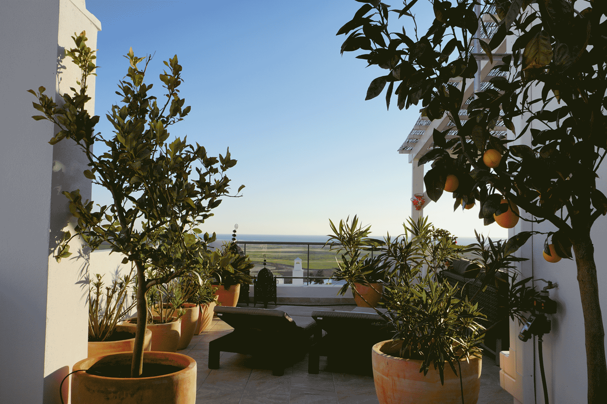 Terrasse_2